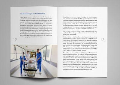 E-Health-Initiative Hessen, Broschüre